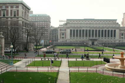 new york colleges